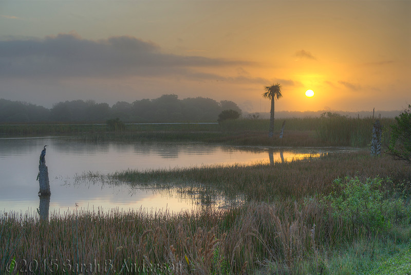 Sunrise, Viera Wetlands