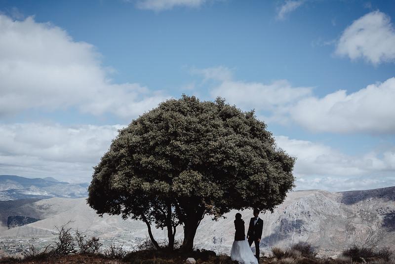 Tu-Nguyen-Destination-Wedding-Photography-Videography-Hochzeitsfotograaf-Ronda-Andalucia-Spain-Granada-Sierra-Nevada-Malaga-33.jpg