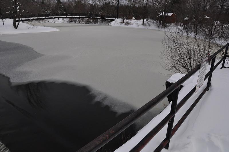 Winter12:13-Nemo-049.JPG
