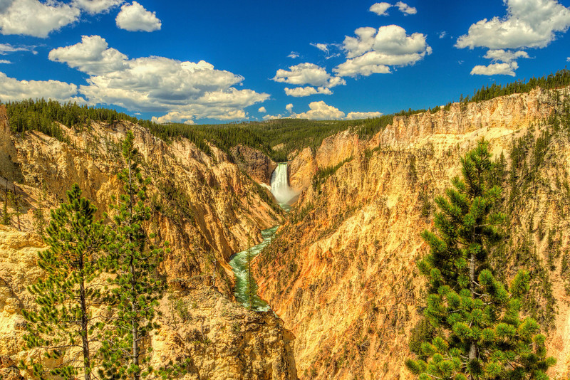 Artist Point Grand Canyon of Yellowstone