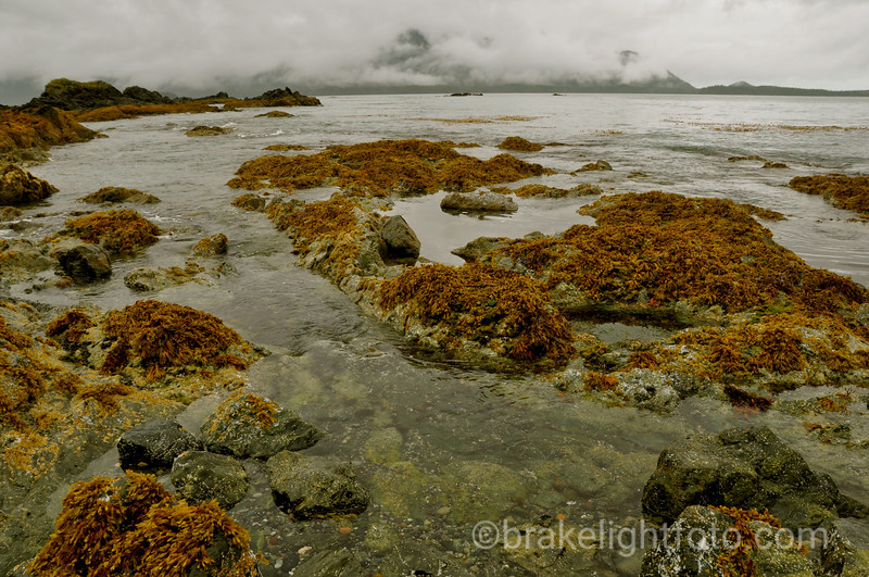 Looking South  Across Nuchatlitz Inlet on a Rainy Day