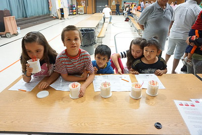 Woodland Prairie Elementary | October 24th, 2017