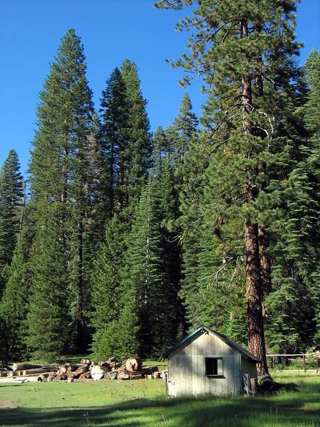 Lassen National Forest (4).jpg