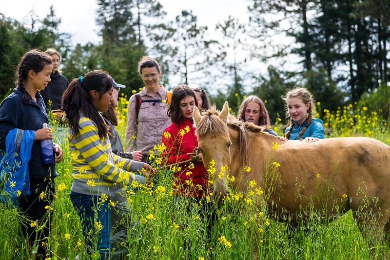 Riveted Kids 2018 - Girls Camp Oaxaca - 204.jpg