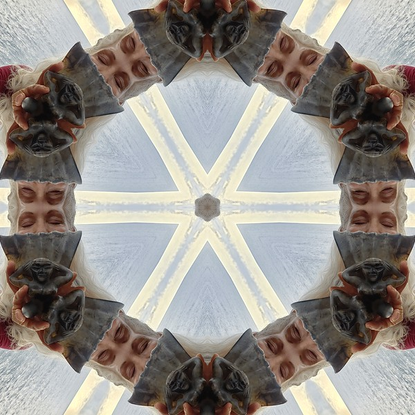 22656_mirror2.jpg