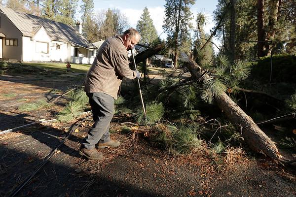 Spokane Windstorm 2015