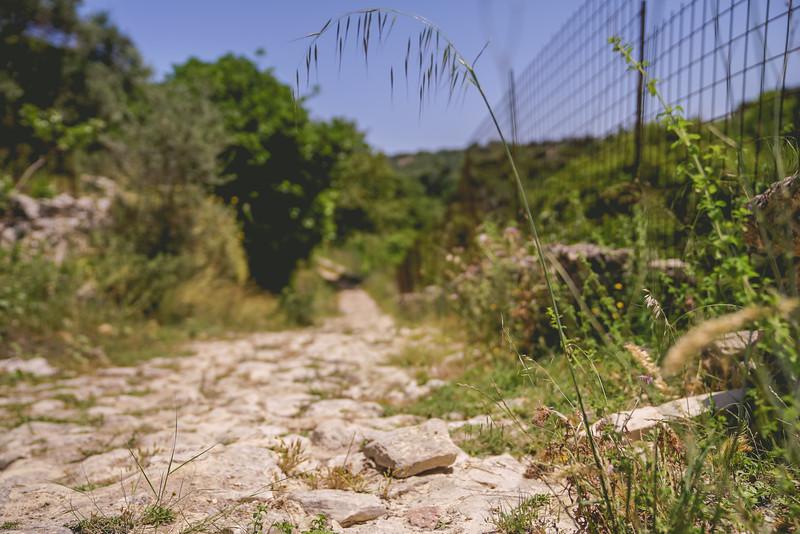 Crete 06.17-253.jpg
