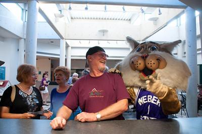 Kitty City Grand Opening