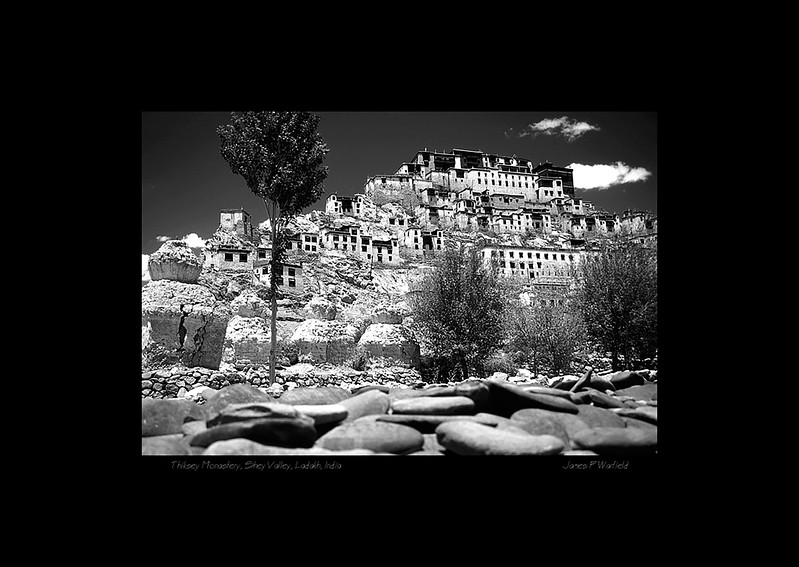 015_Thiksey Monastery, Shey Valley, Ladakh, India copy.jpg