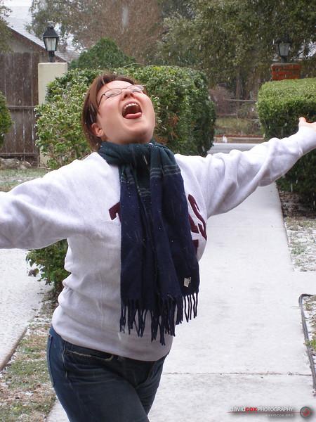 Austin Ice Storm (January 2007)