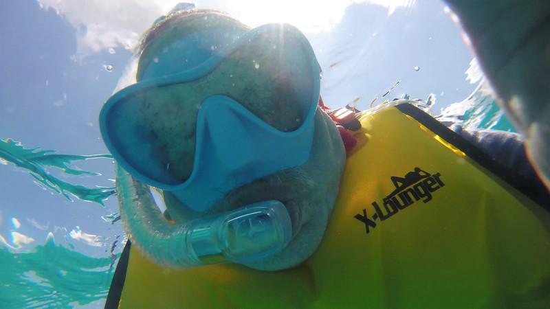 Cozumel Snorkel 3.jpg