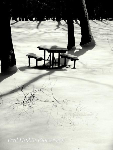 table snow bw.jpg