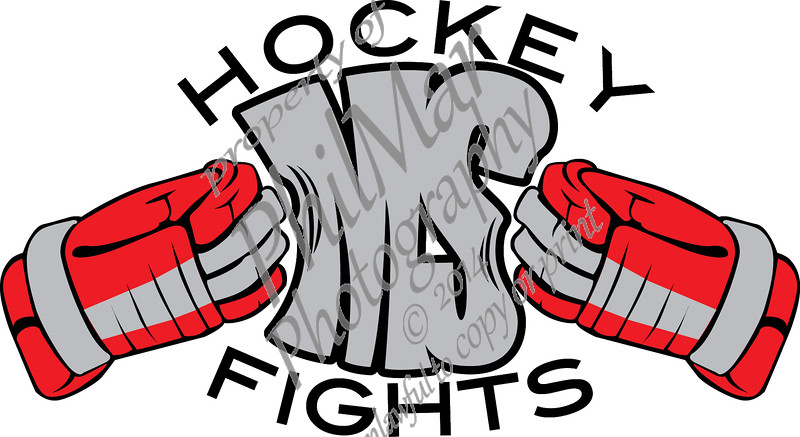 Hockey Fights MS