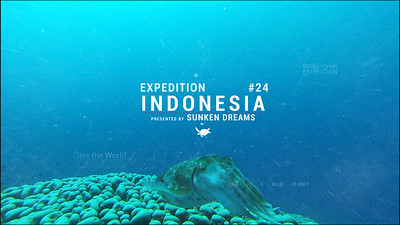 SDSDA Ex 24 Indonesia Episode 8