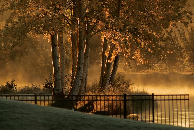 BBR-View-Lodge-Fall-Aspens-Lodge-KateThomasKeownKTK-DSC_6568 copy.jpg