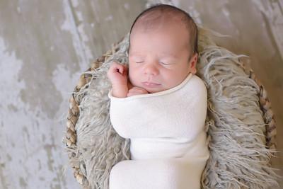 Lipari Newborn