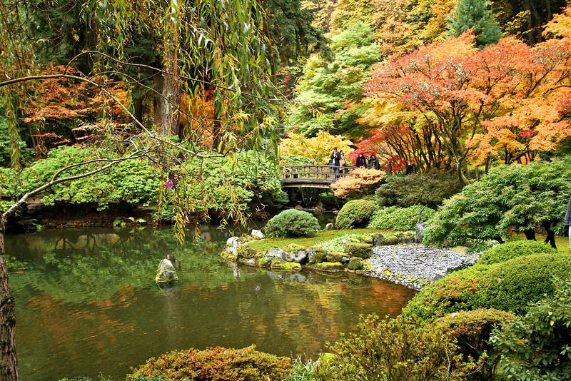 Portland Japanese Garden  11-11-11  3582.jpg