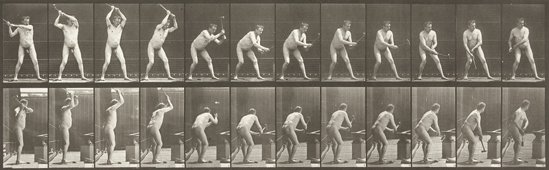 Nude blacksmith hammering on anvil with two hands (Animal Locomotion, 1887, plate 376)