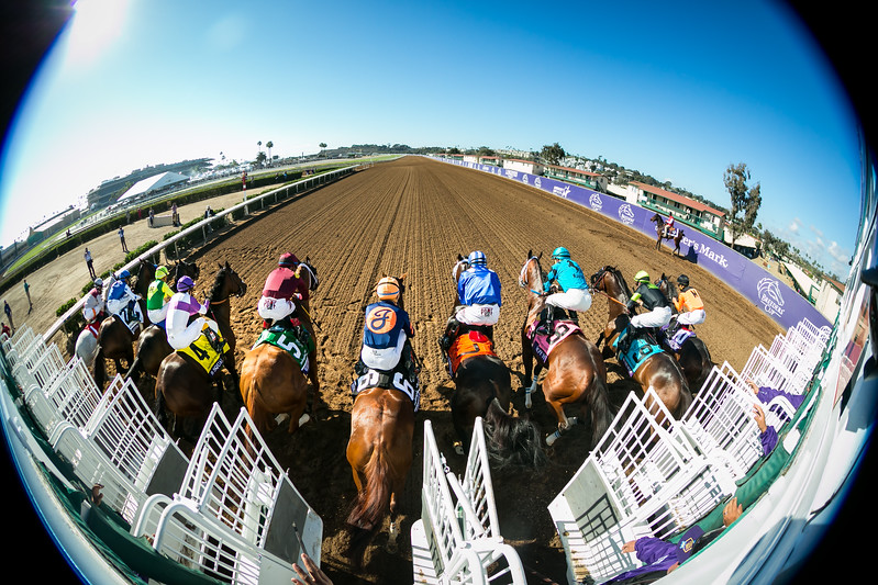 Roy H (More Than Ready) wins the BC Sprint at Del Mar on 11.4.2017. Kent Desormeaux up, Peter Miller trainer, Rockingham Ranch and David Bernsen owners.