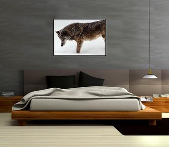 Wolf Framed Mockups