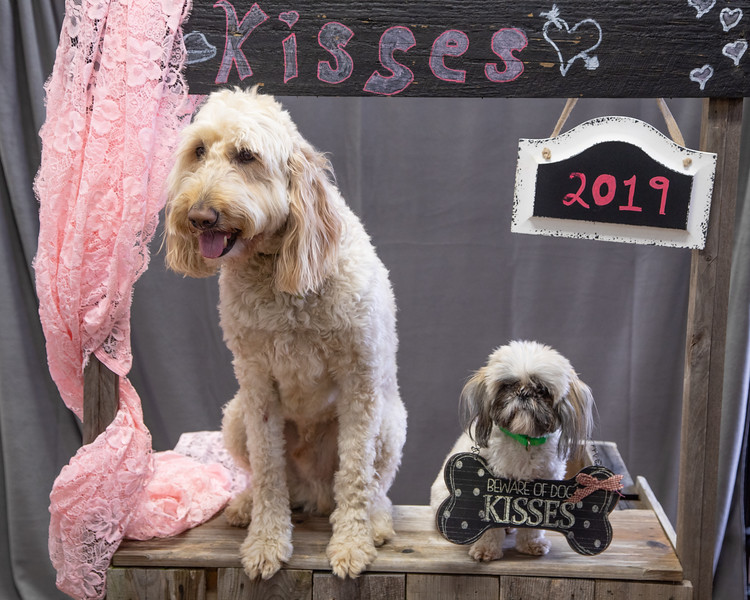 GDU Kissing Booth 2019-2.jpg