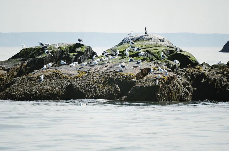 Along Bay of Fundy