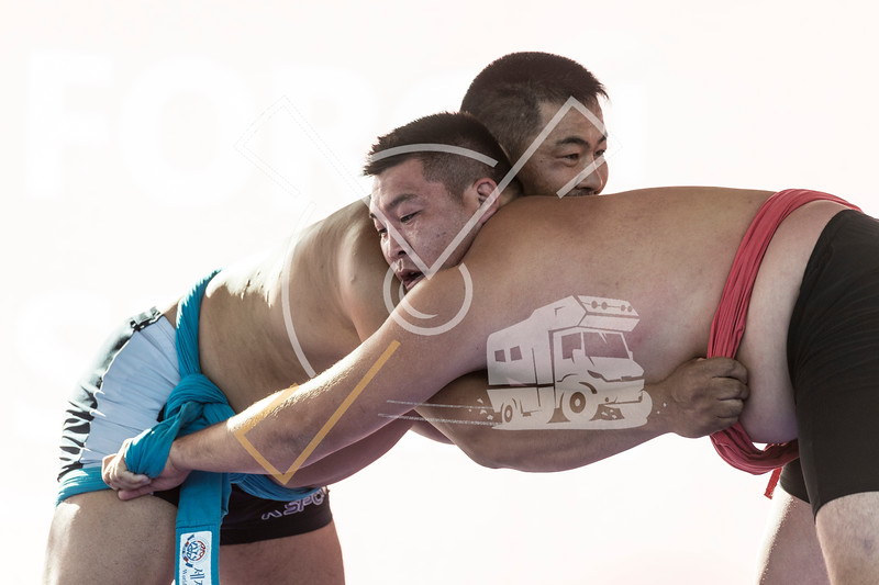 Two wrestlers in action during a Ssireum competition at the World Nomad Games 2018 in Kyrgyzstan.