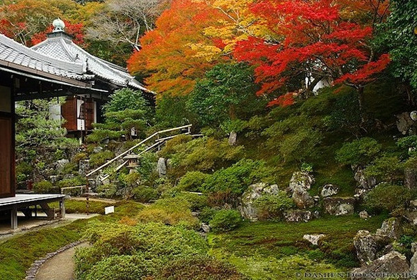 Reikan-ji Temple image copyright Damien Douxchamps