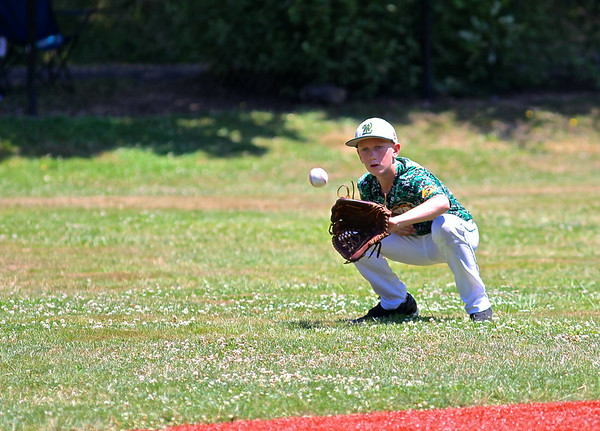 West Linn vs Portland Baseball July 12, 2014
