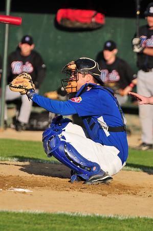 Fredericton Royals Baseball