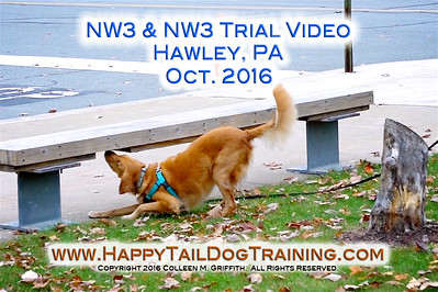 HawleyPA Oct 2016 Sample Videos