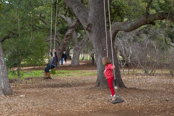 Tu BiShvat Tree Planting in Austin