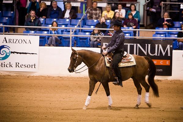 2011 Scottsdale Show