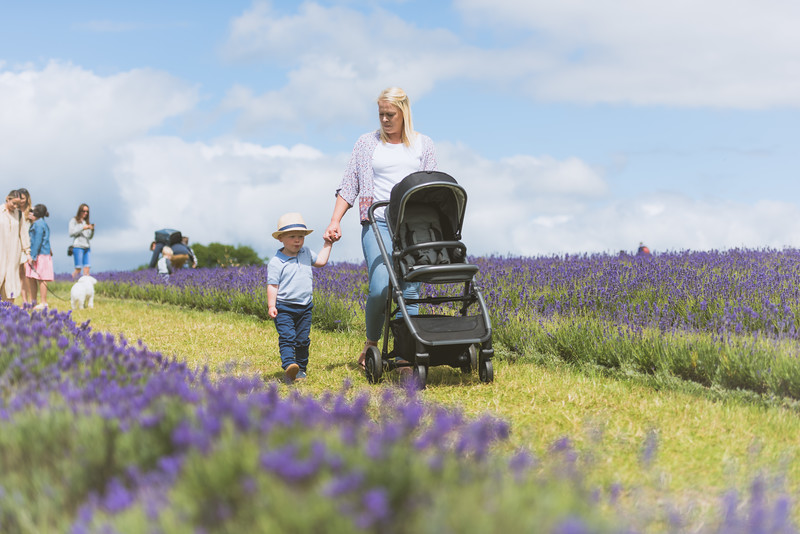 Arc Pushchairs (1 of 6).jpg