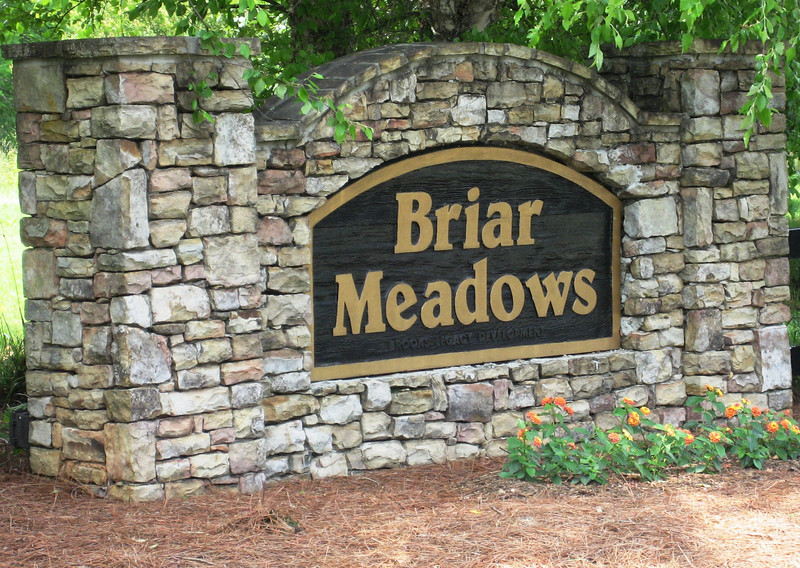 Briar Meadows In Cumming Georgia (3).JPG