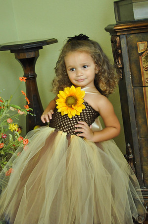 Sunflower Ballerina
