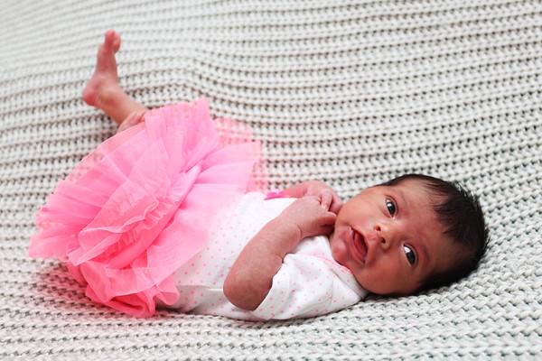 Bella Newborn