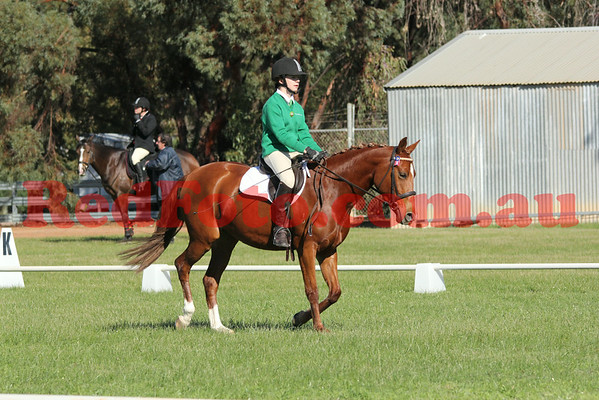 2014 06 15 Katanning Dressage ShowJumping Day June Dressage