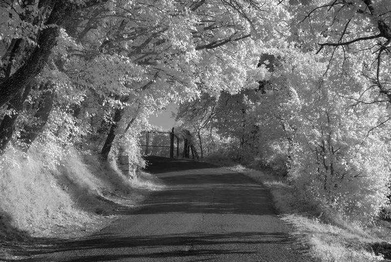Panzno Road final.jpg