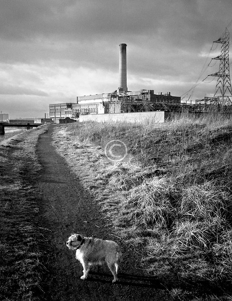 Dalmarnock Power Station.   And the dug, out for a Ne'erday walk..    January 1976