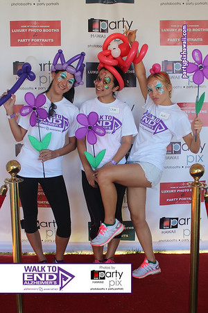 2014 Alzheimer's Walk for the Cure (Red Carpet Wall)