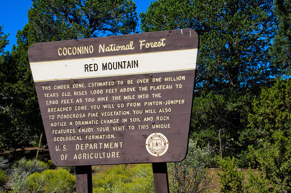 Red Mountain and Kachina Trails