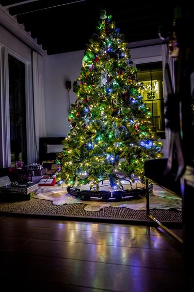 Christmas 2017-1080018.jpg