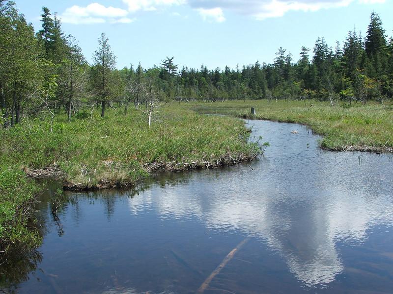 Maine 2007 215.JPG