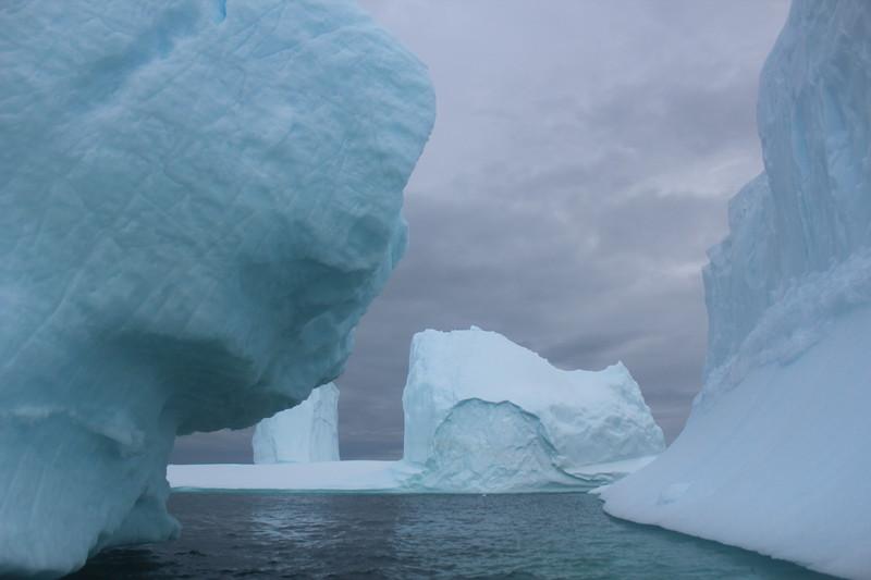 Antarctica 258.JPG