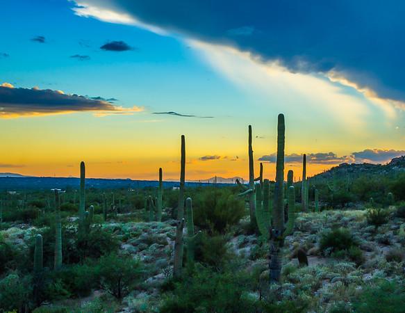 Saguaro Sunset 10-5-2016 RH.jpg