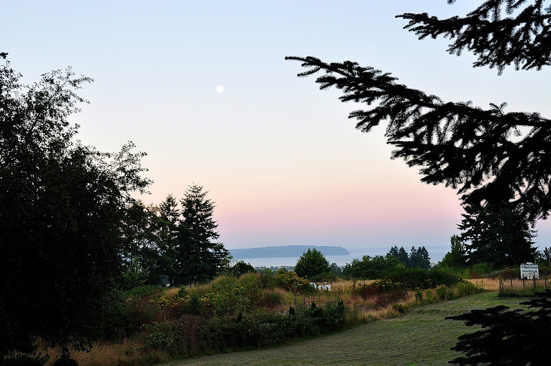 A Whidbey Island View