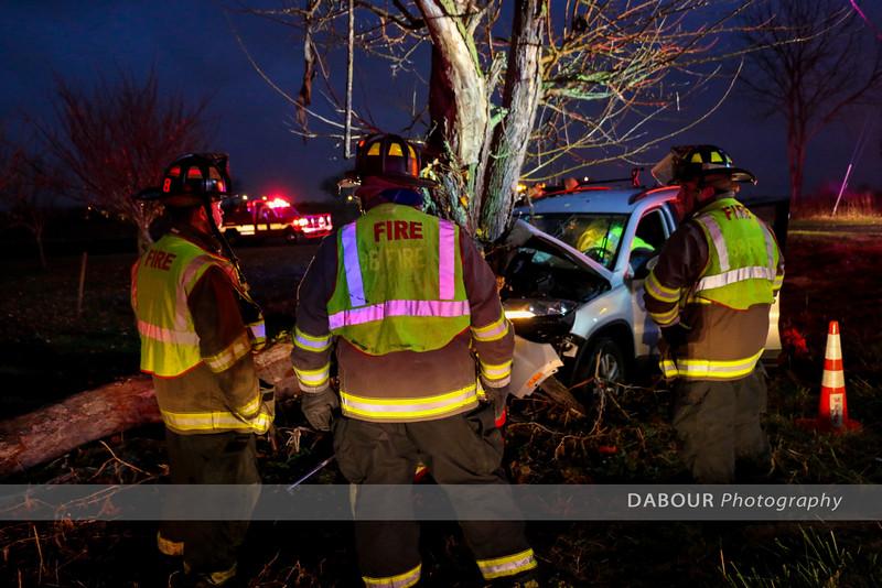 Car Vs Tree Beattys Rd