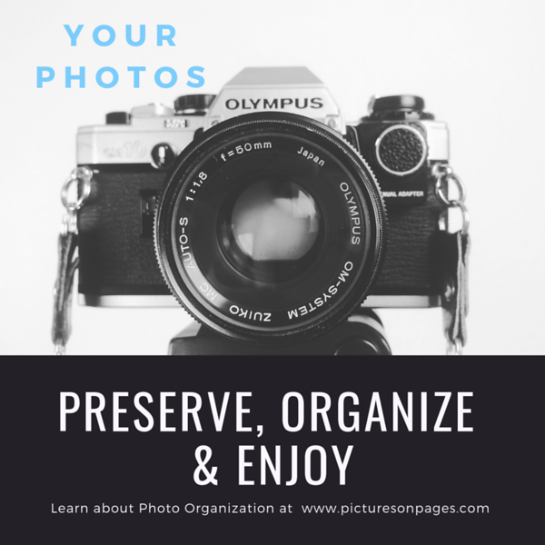 Preserve, ORganize and Enjoy #2.png