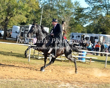 CLASS 13 - 4 YR OLD OPEN SPECIALTY